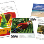 Custom Calendar Printing San Jose